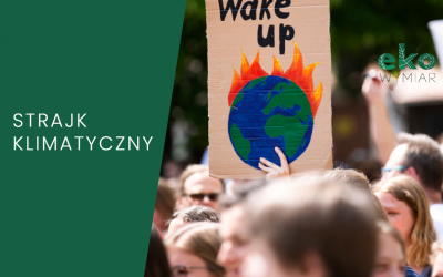 Strajk Klimatyczny